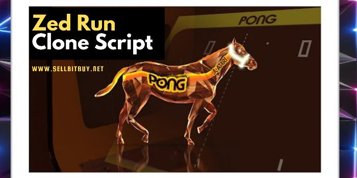 Zed Run Clone Script - Cover Image